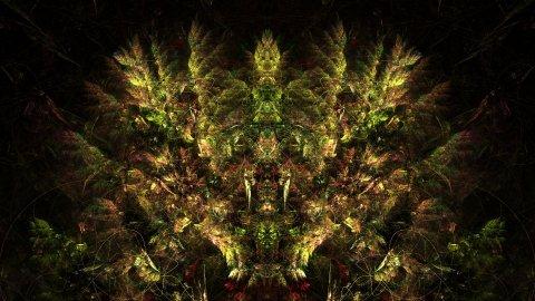 Post symmetry test 2